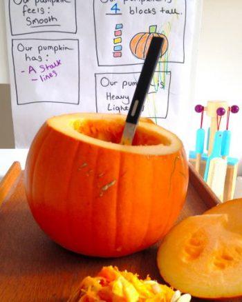 Pumpkin Investigation Chart & Pumpkin Guts Sensory Activity