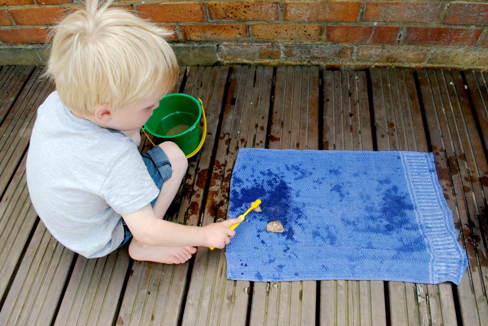 Montessori Cleaning Shells Activity