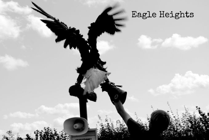 Eagle Heights 141