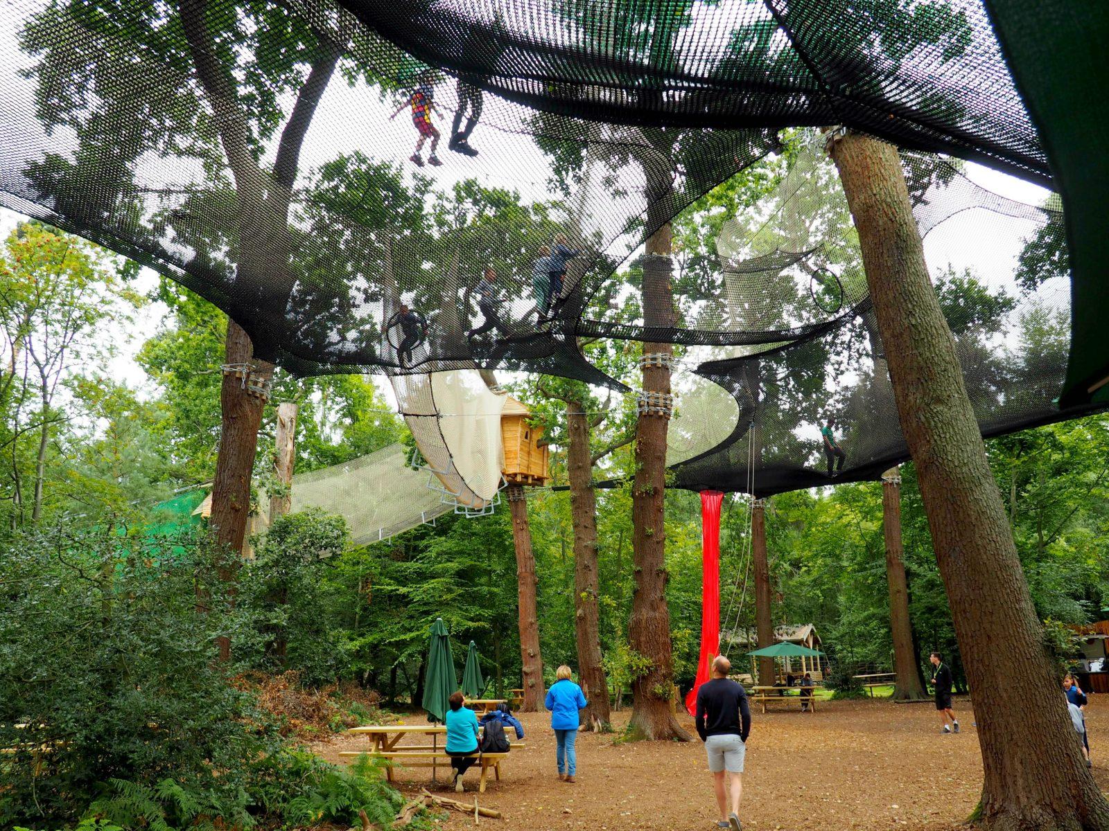 A day at Go Ape Black Park 'Nets Kingdom' – A Review