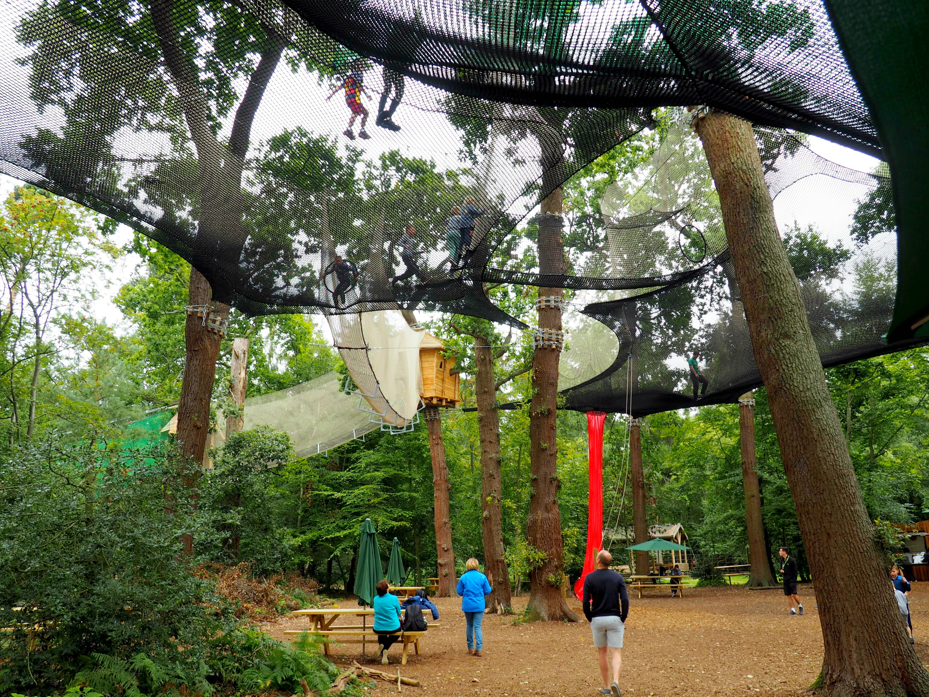 A day at Go Ape Black Park 'Nets Kingdom' – A Review