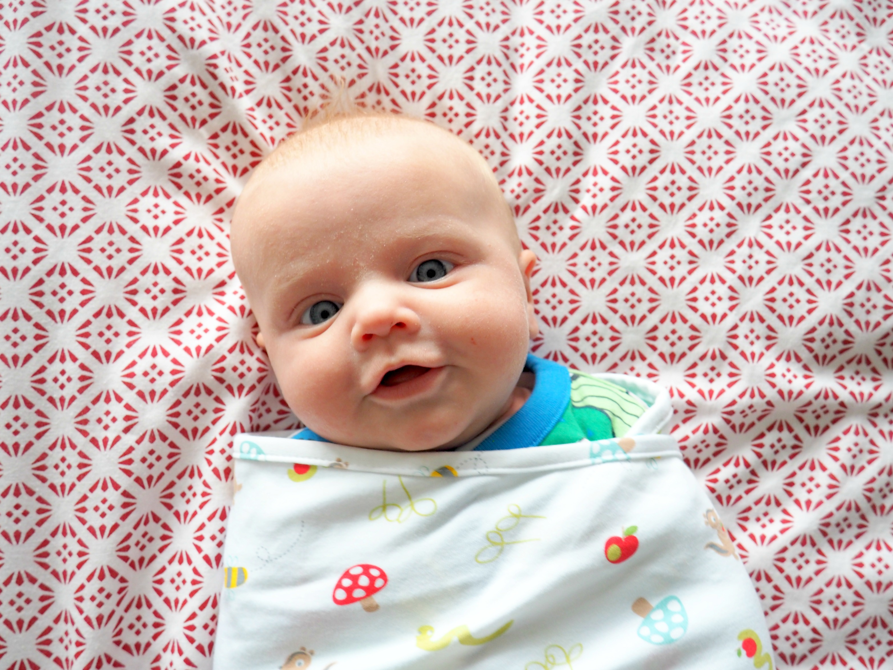 Groswaddle – A Review