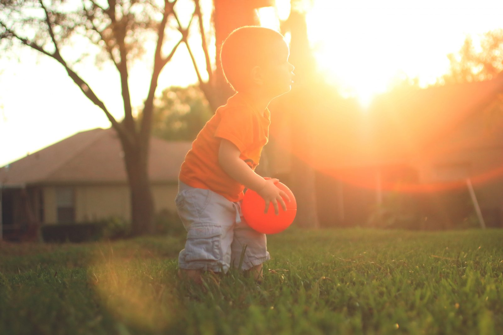 Top Tips to achieve a child-friendly garden