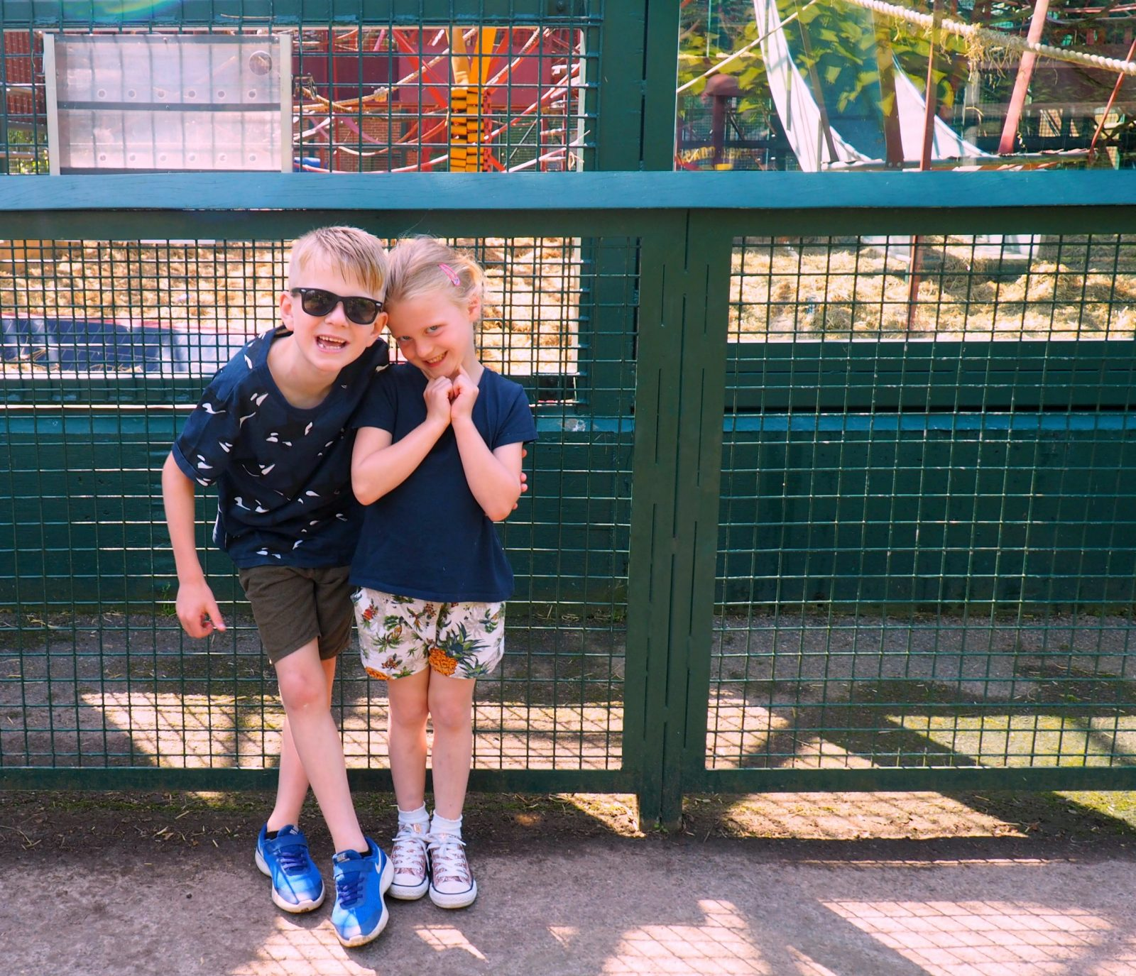 Howletts Wild Animal Park – A Review