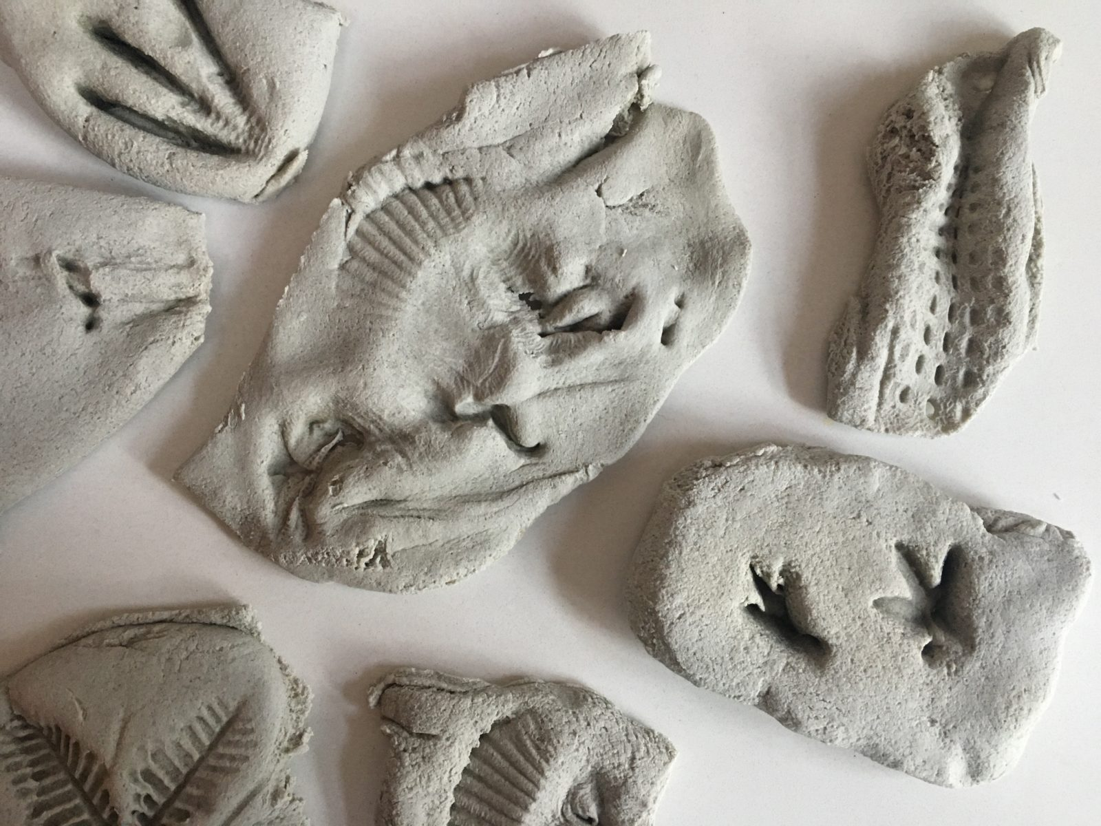 Salt Dough Fossils