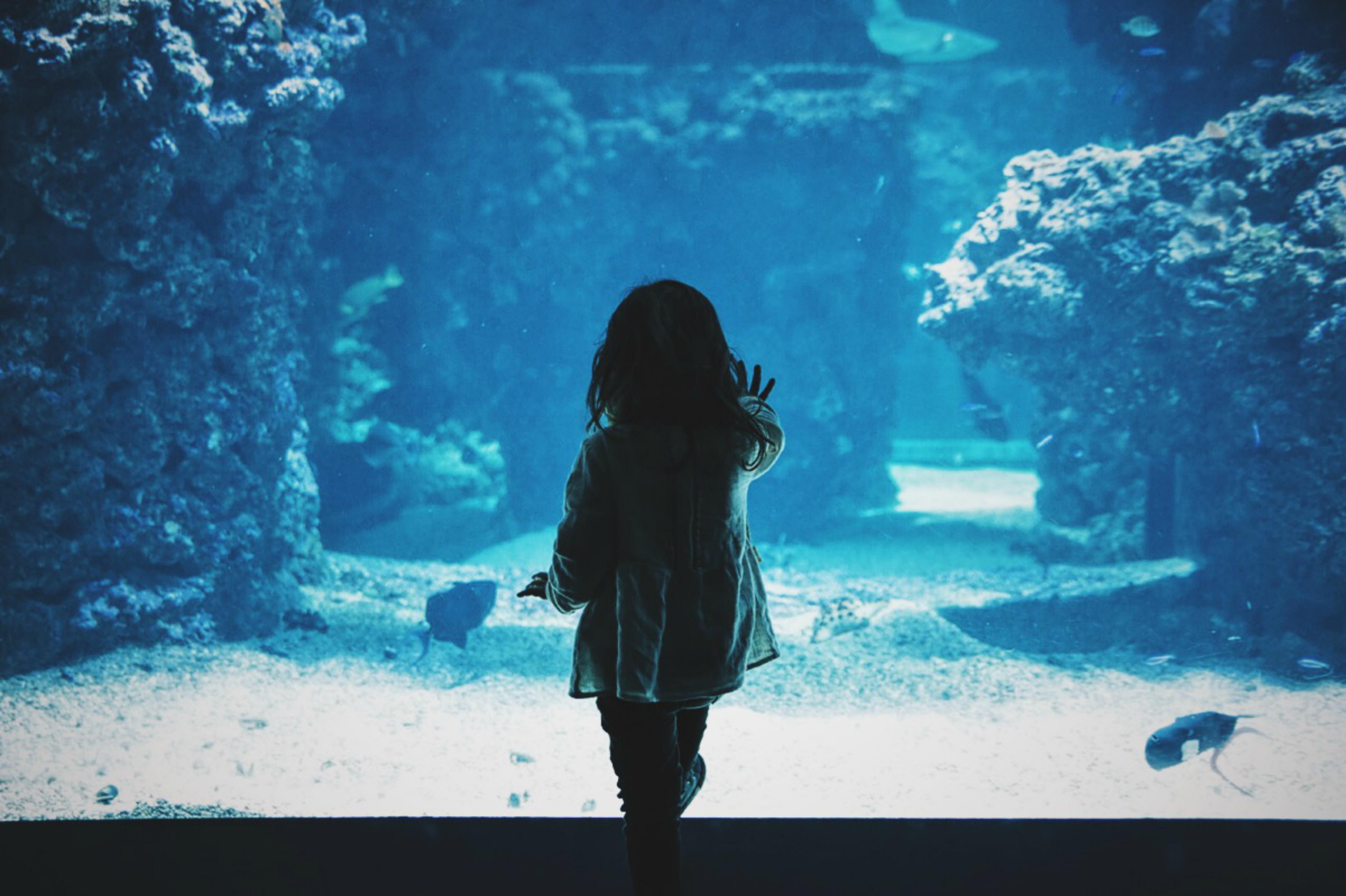 family day at aquarium