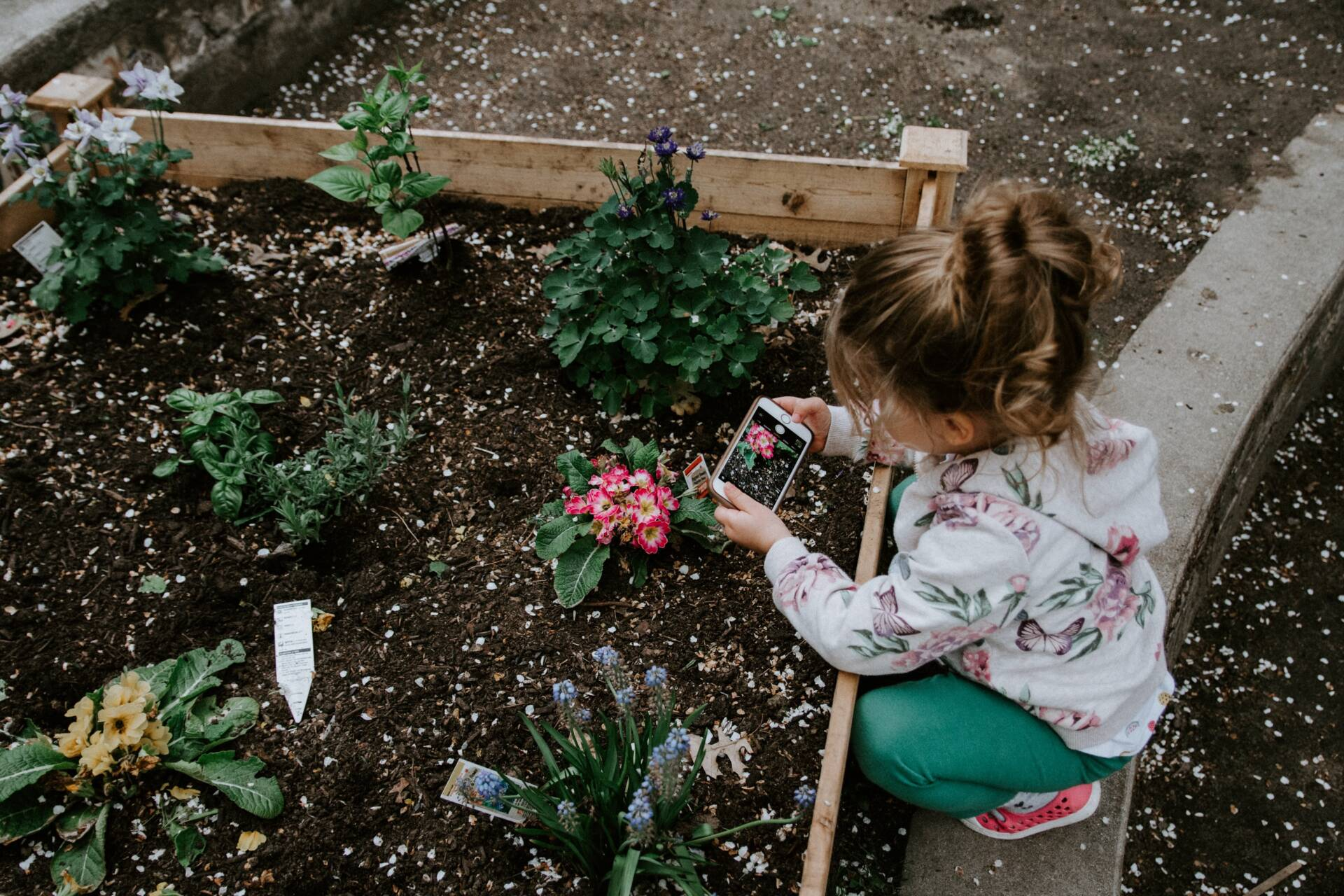 8 Things Every Family Garden Should Have